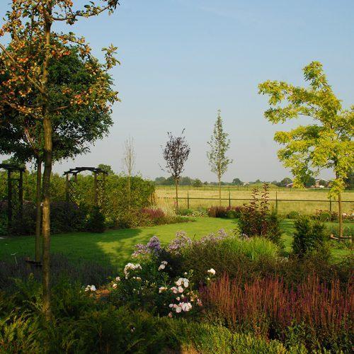 Bloemrijke tuin, buiten zijn in kleurenpracht