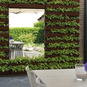 tuinvoorbeelden groene wand