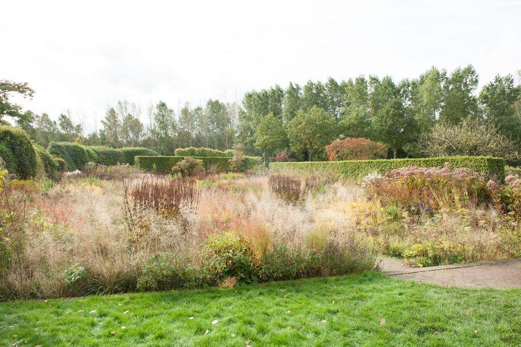 Tijd Voor Tuin : Femke van dam tuin van de tijd