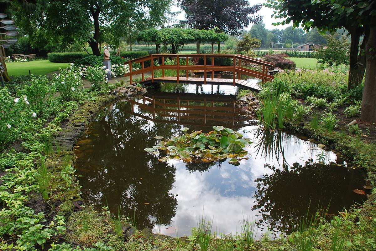 Vijver rustgevend water in de tuin bindels tuinen for Moderne vijvers foto s