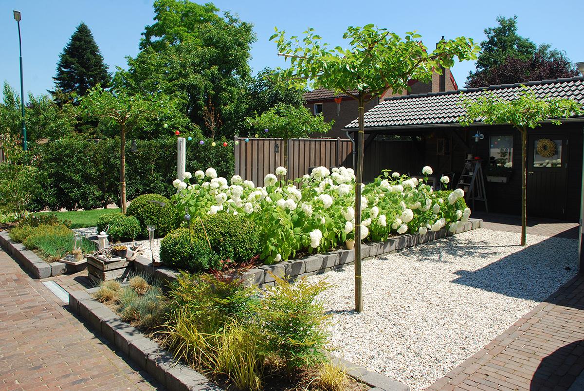 Strakke tuinen voortuin aanleg kleine moderne voortuin van gelder tuinen strakke moderne - Tuin ontwerp foto ...