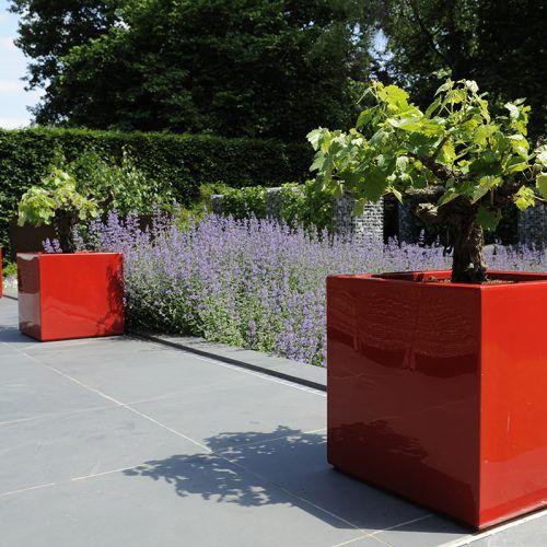Moderne tuin, geef uw tuin een luxe uitstraling