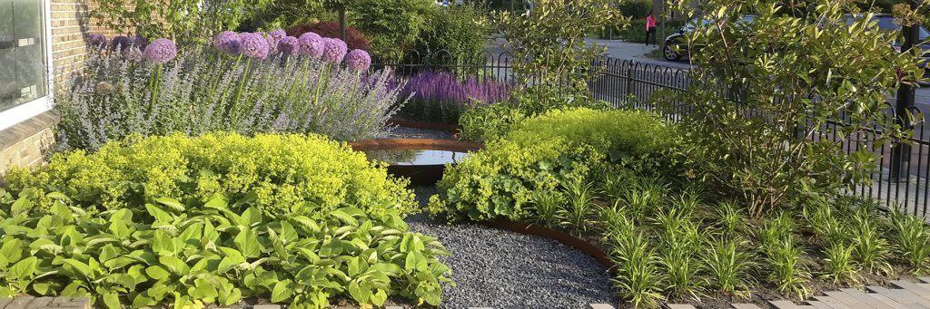 onderhoudsvriendelijke tuin met planten